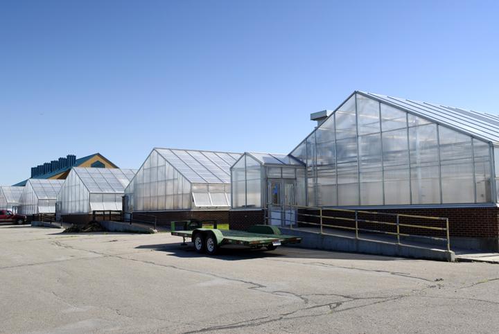Plant Sciences Greenhouse