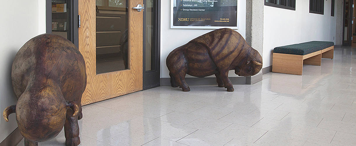 bison statues in front of OTL office doors