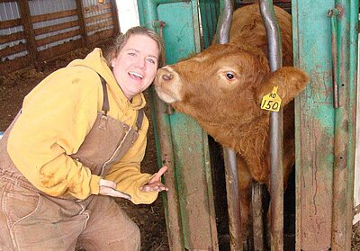 An NDSU vet tech student interacts a beef cow