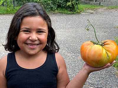 A young girl hold a very large tomato.