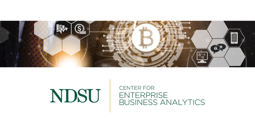 Center for Enterprise Business Analytics