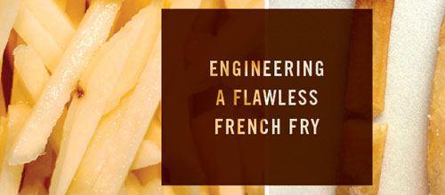 Flawless french fry
