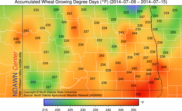 weekly wheat GDDs