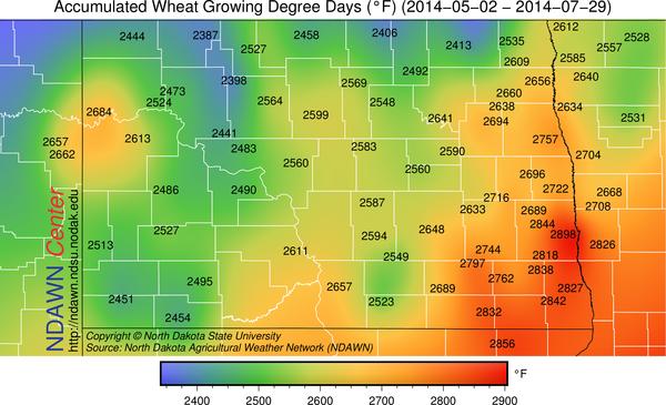wheat GDDs