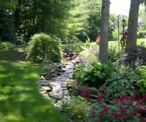 Types of gardens by robyn thoennes for Rock garden designs shade