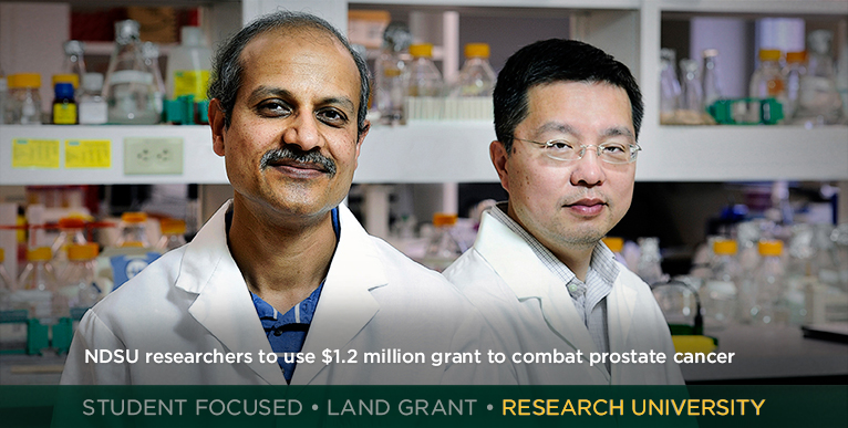 NDSU researchers to use $1.2 million grant to combat prostate cancer