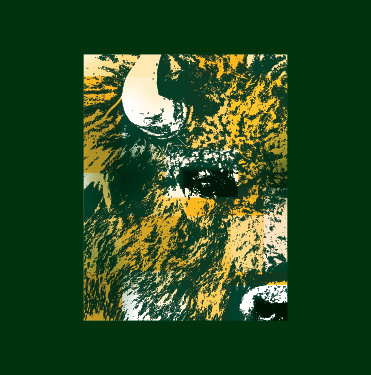 ndsu homecoming 2019 bison profile photo