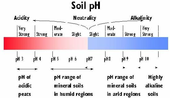 Soil pH ndash NDSU Soil Health