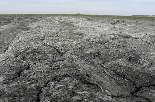 Soilhealthandlandmanagement_5405