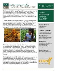 Corn salinity_6-13-16-1