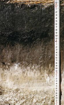 Genesis soil science ndsu for Soil genesis